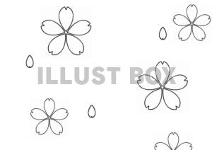 無料イラスト 塗り絵 桜の花