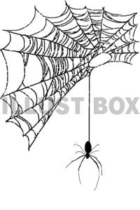 無料イラスト 蜘蛛の糸