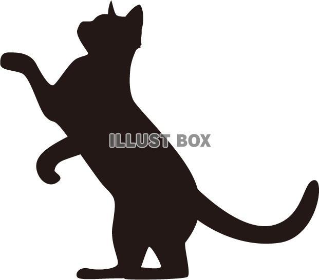 無料イラスト シルエット 猫背伸び