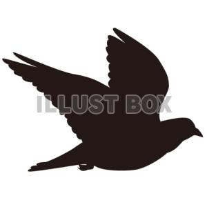 無料イラスト 【シルエット】飛んでいるハト