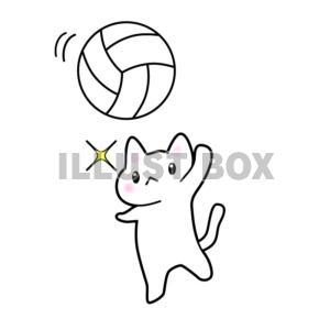 バレーボールの画像 p1_28