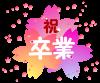 桜素材(卒業)[透過PNG]