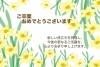 卒業祝いのスイセンの花カード