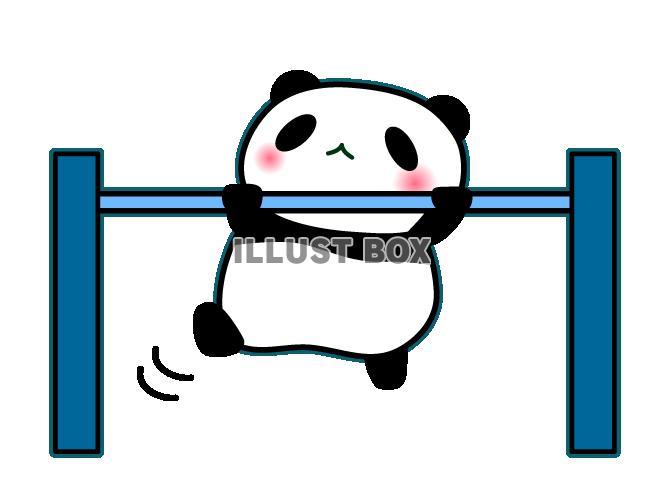 無料イラスト 鉄棒しているパンダのイラスト