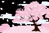 入学祝いの桜のメッセージカード