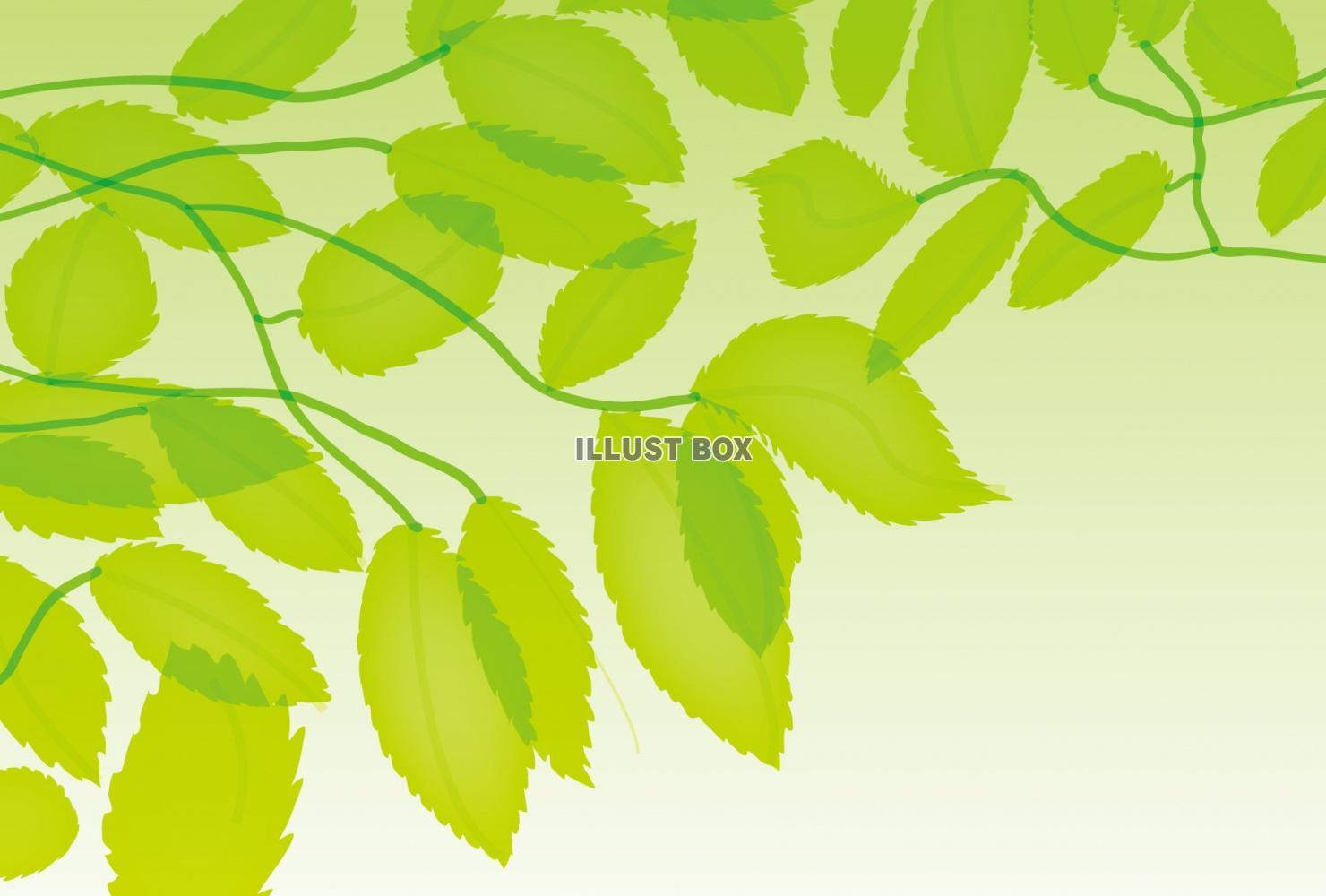 無料イラスト 5月の新緑のさわやかな若葉