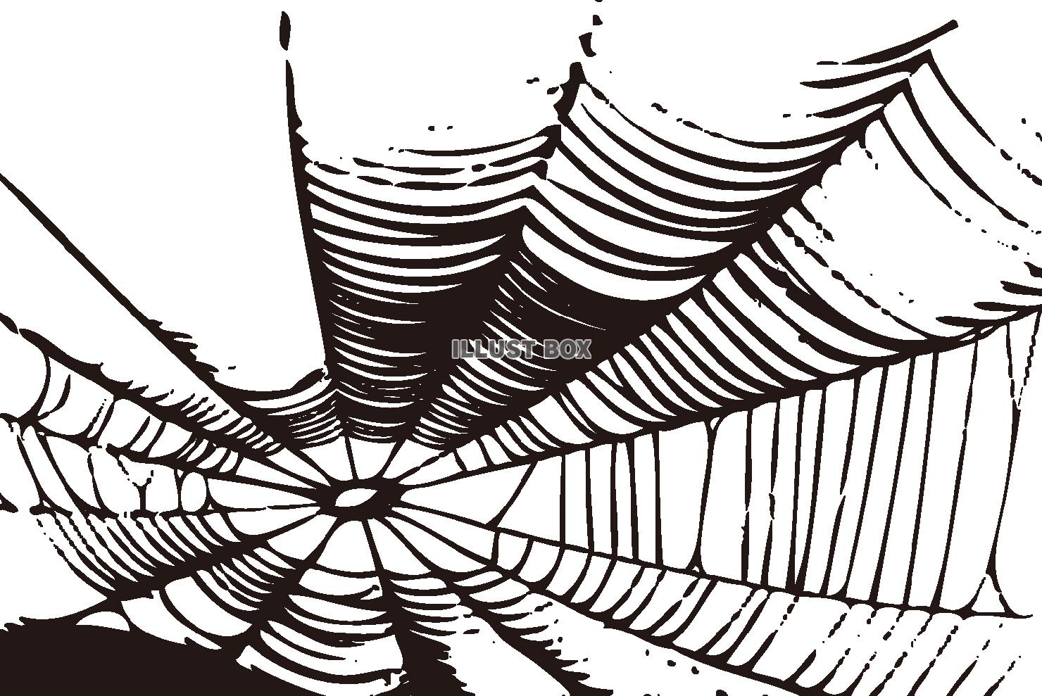 無料イラスト 【ハロウィン素材】クモ 蜘蛛の巣