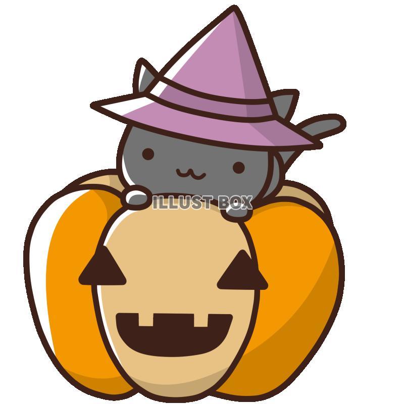 無料イラスト 【ハロウィン素材】かぼちゃと魔女猫【透過PNG】