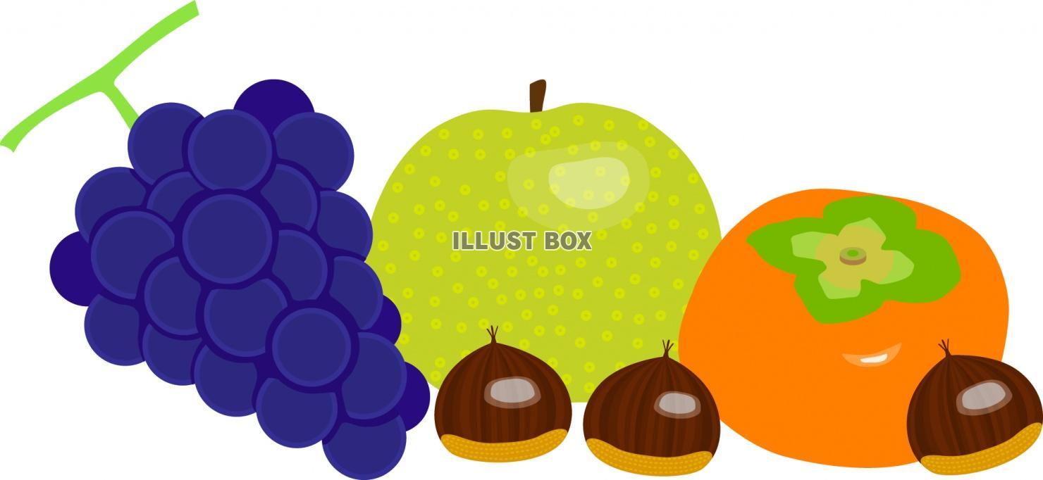 無料イラスト 秋の果物のイラスト