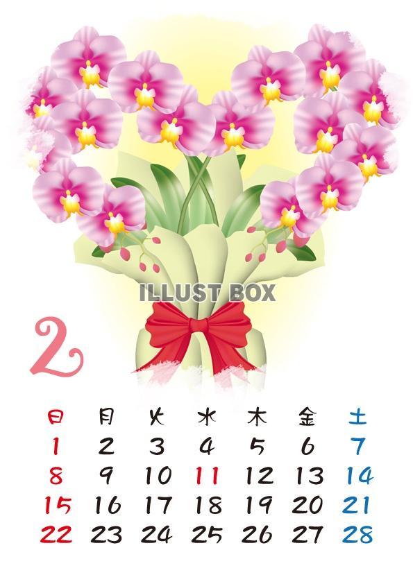 無料イラスト 2015カレンダー四季の花カレンダー 2月