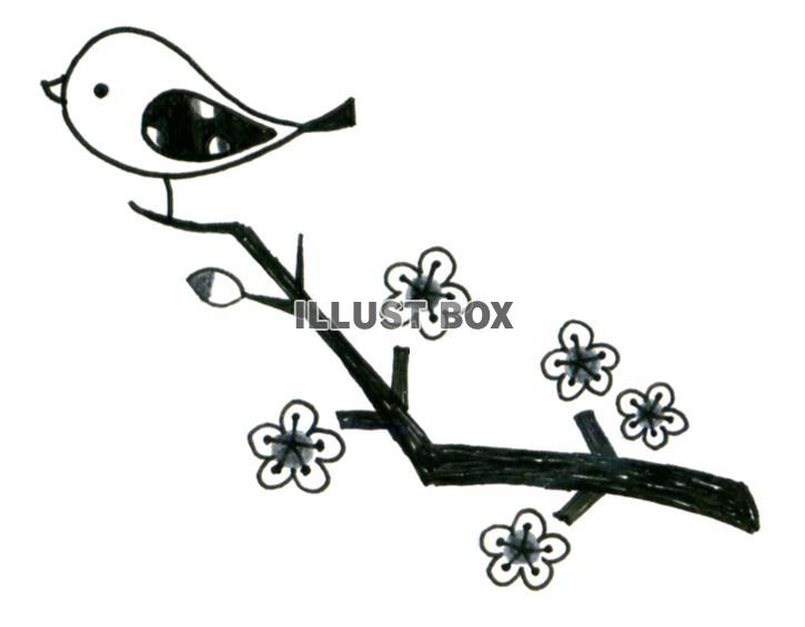 無料イラスト 桜の木と鳥モノクロ透過png