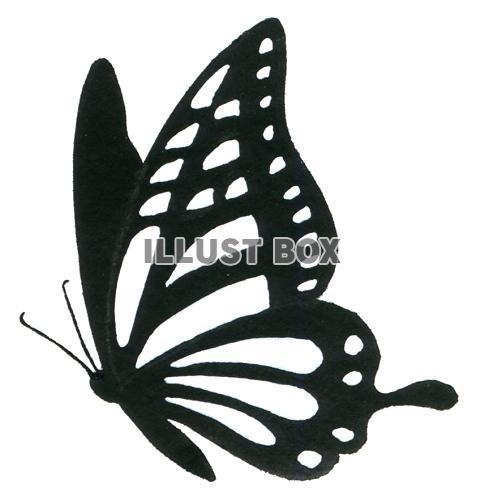 [一番欲しい] 蝶々 イラスト 白黒