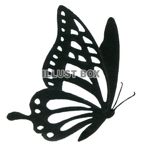 イラスト 蝶々