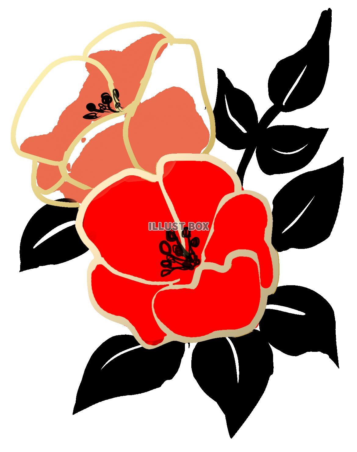 無料イラスト 透過png水墨画風の花