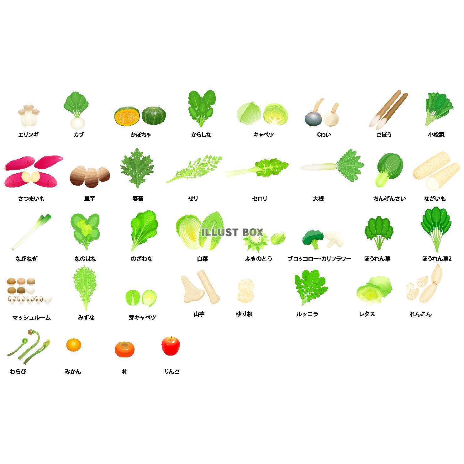 無料イラスト 冬野菜アイコン(png・cseps)
