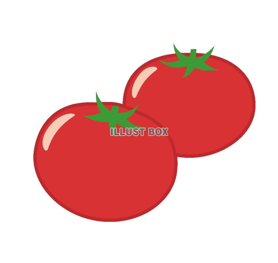 トマトの画像 p1_17