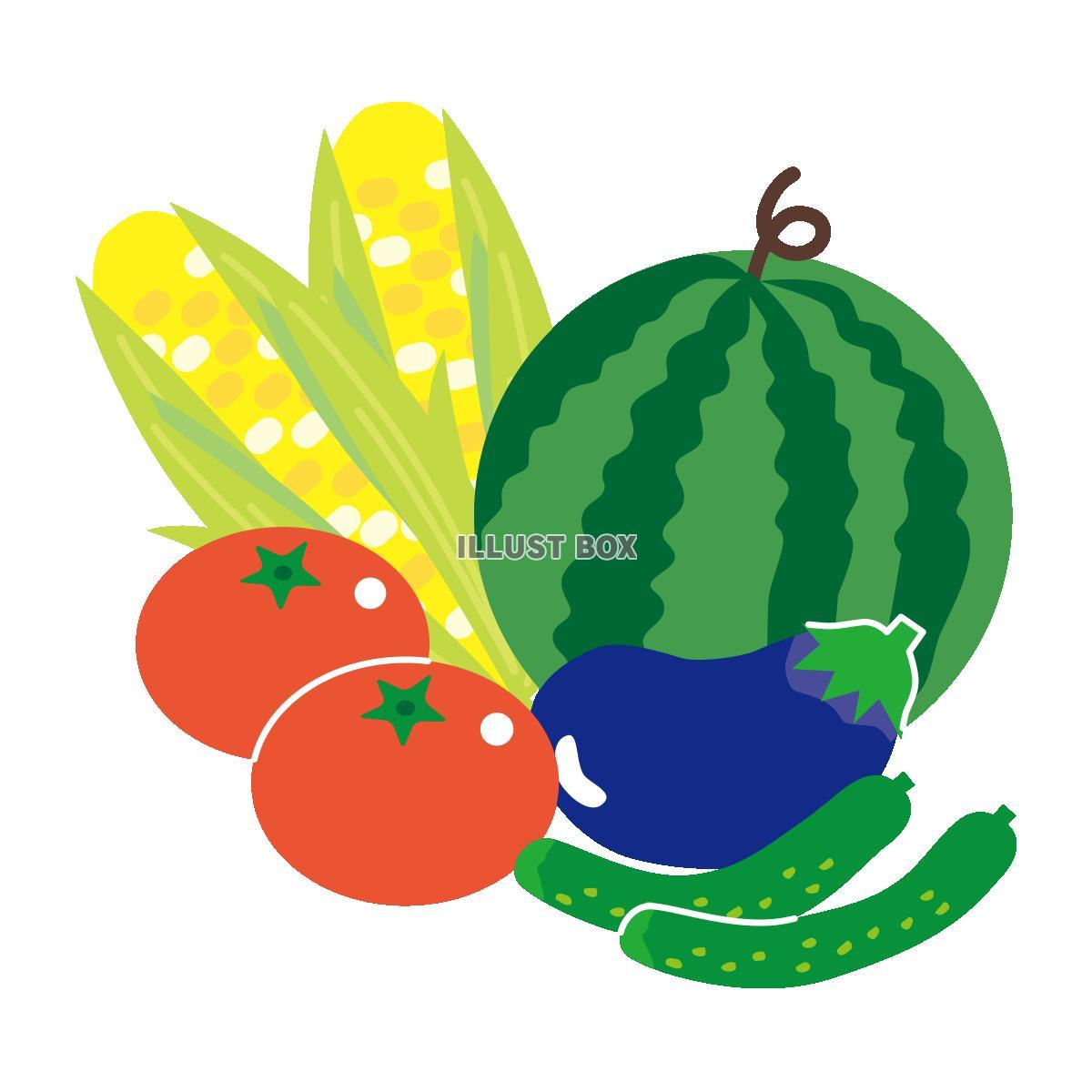無料イラスト 夏野菜