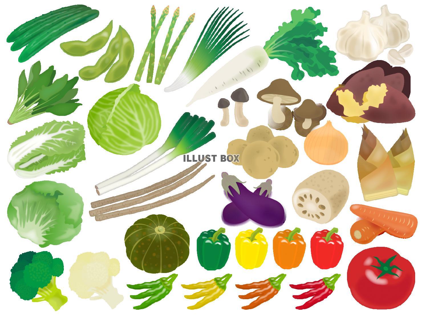 無料イラスト 野菜のイラストセット