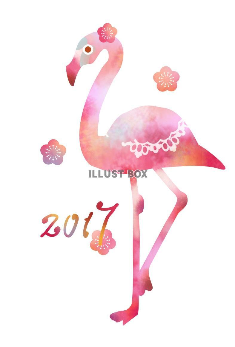フラミンゴの画像 p1_10