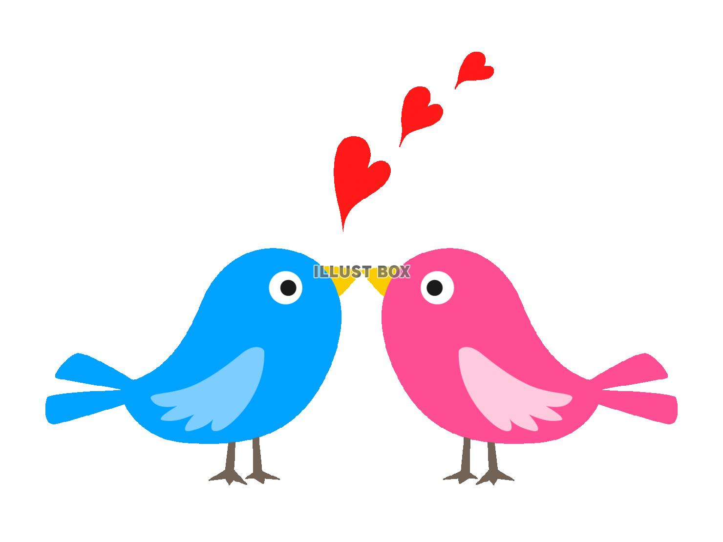 無料イラスト 小鳥のカップル