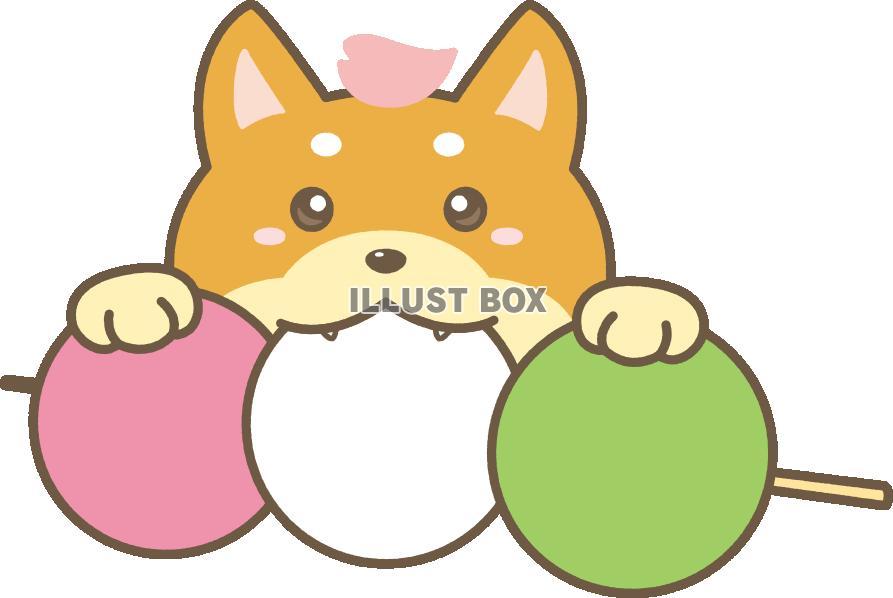 無料イラスト 柴犬とおだんごのイラストpng透過素材