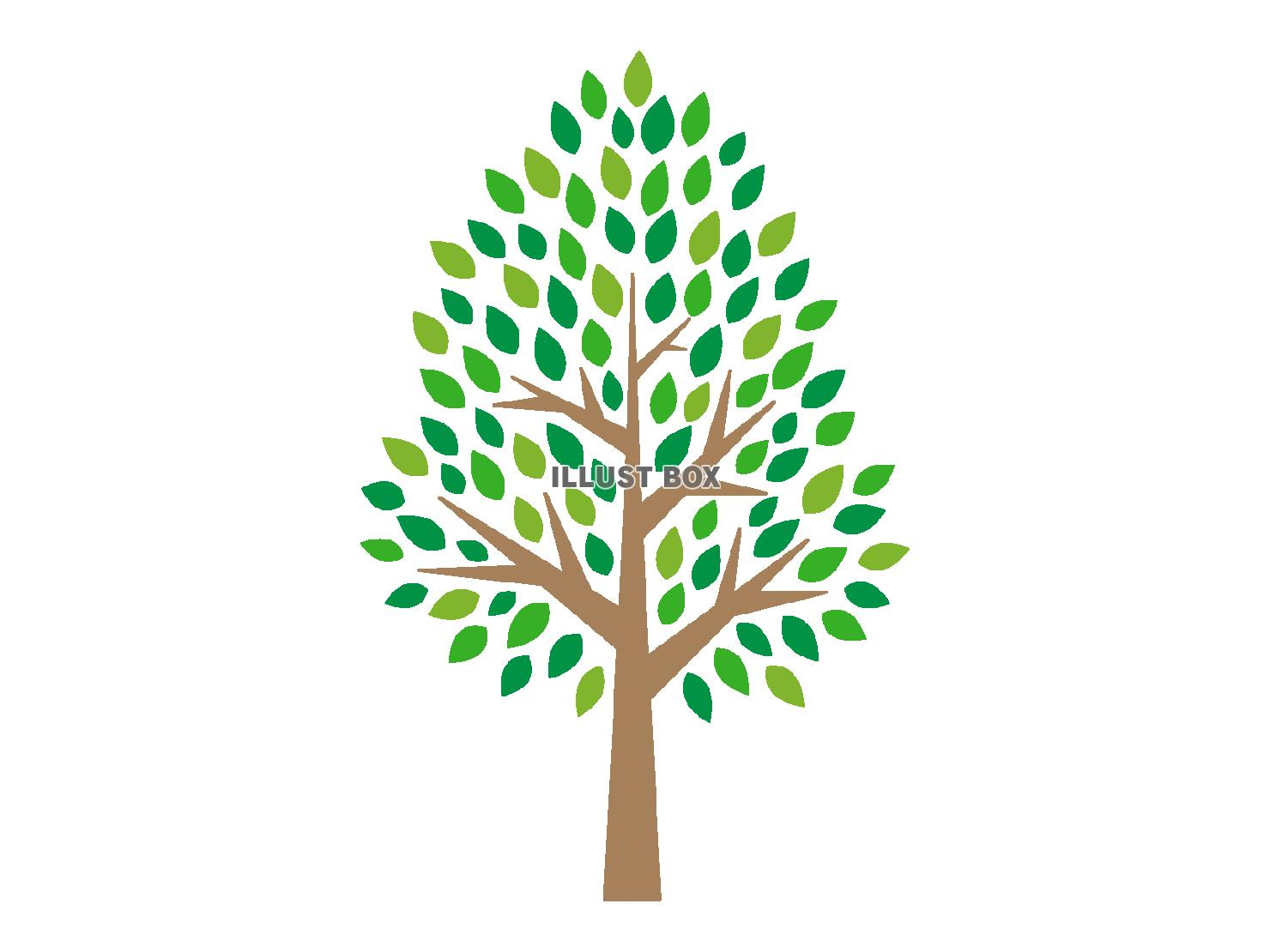 無料イラスト 木のイラスト