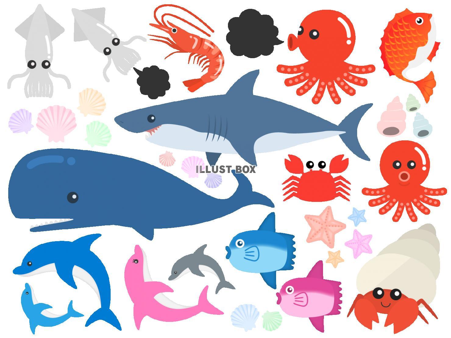 の 生き物 イラスト 海