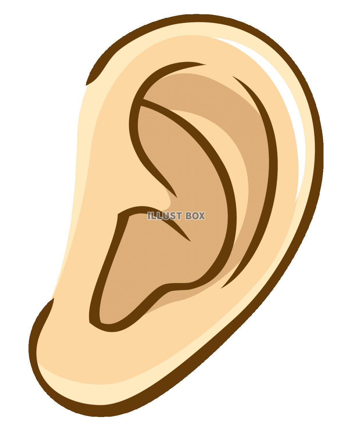 無料イラスト 耳つぼピアスイヤリング耳鼻科聞く聴く聴覚耳垢