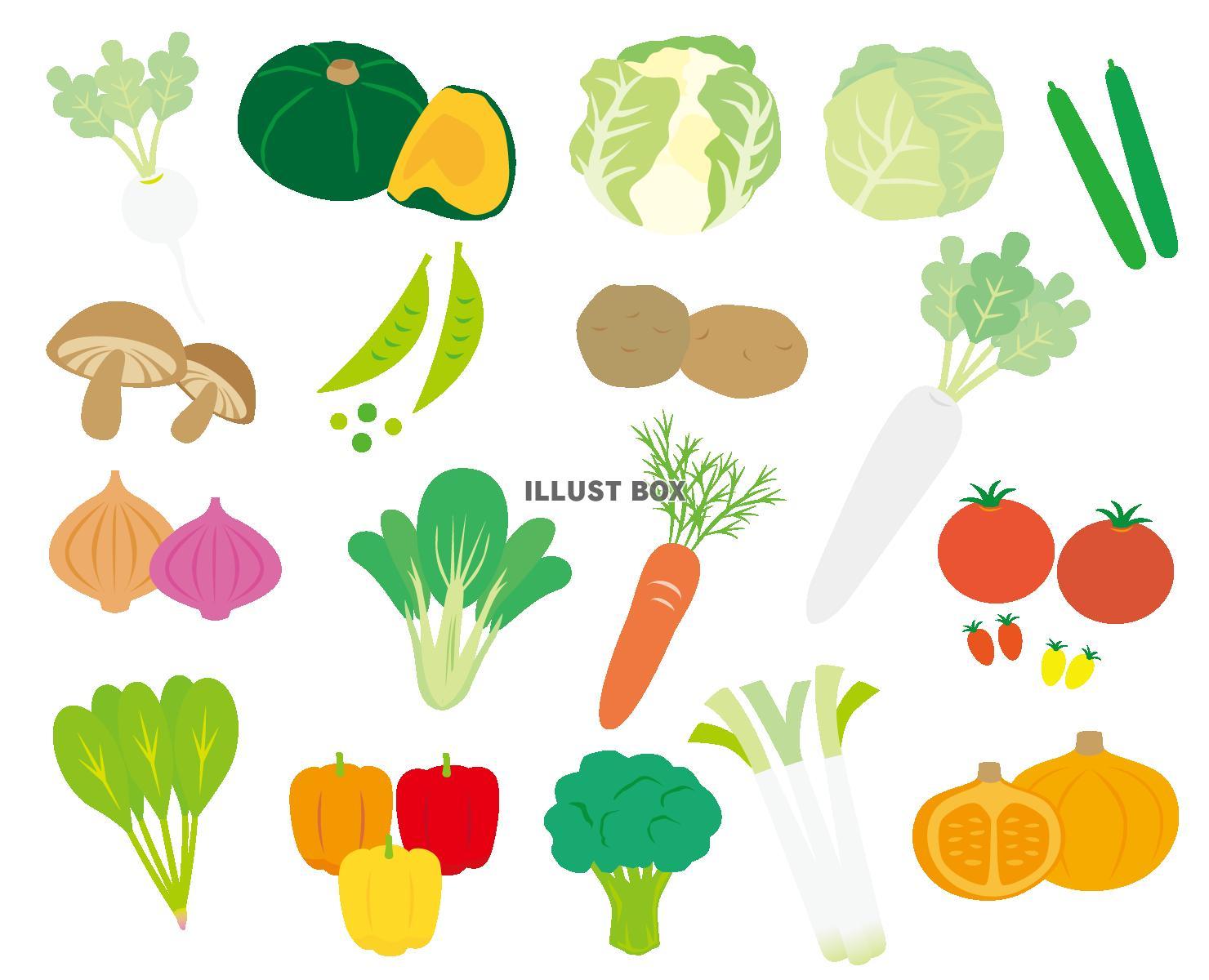 無料イラスト いろいろな野菜のイラストセット 透過(png)とベクター(e