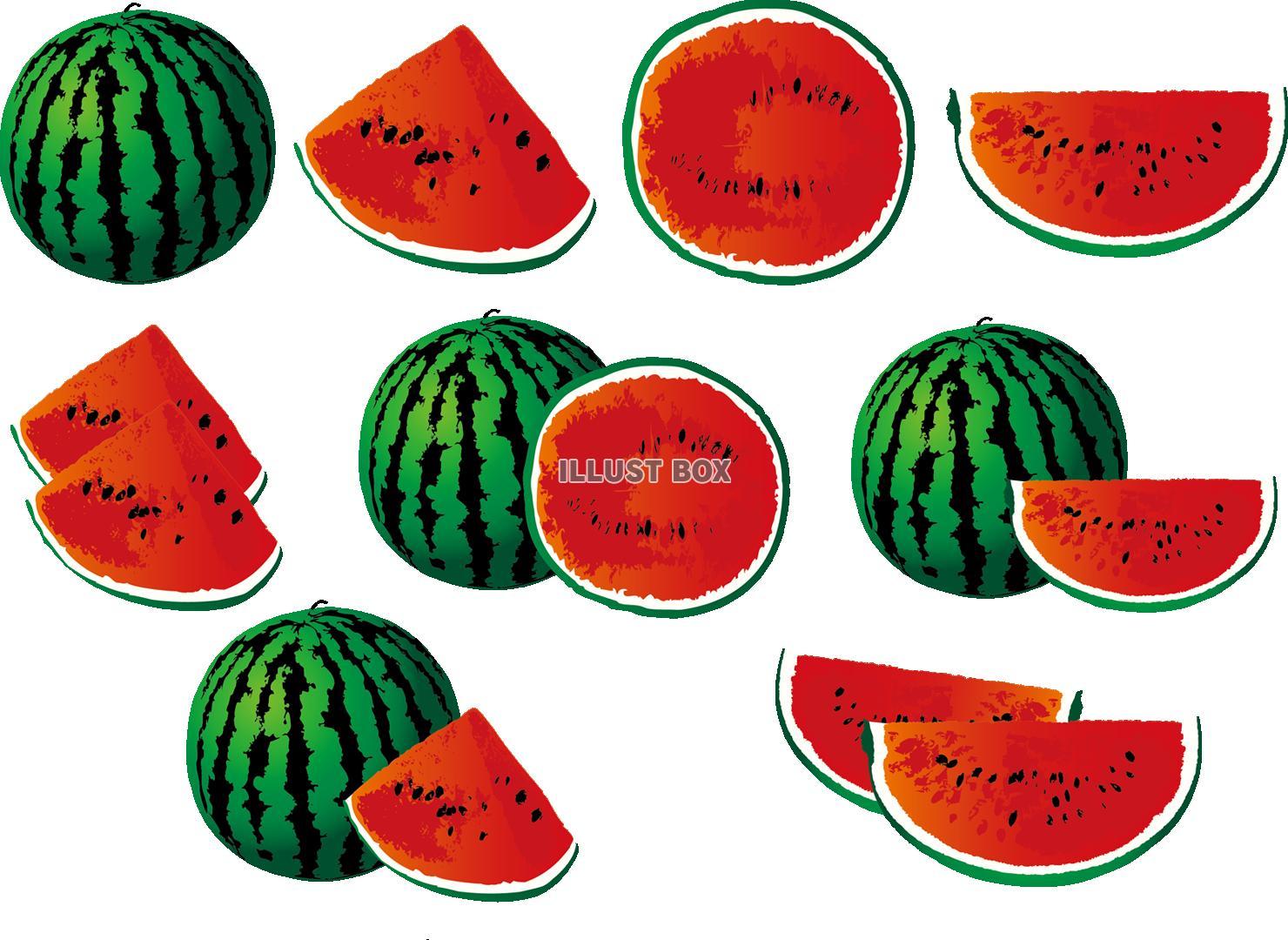 無料イラスト 透過png果物くだものフルーツスイカ西瓜すいか断面スイカ