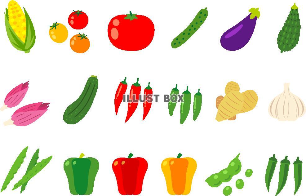 無料イラスト 夏野菜セット