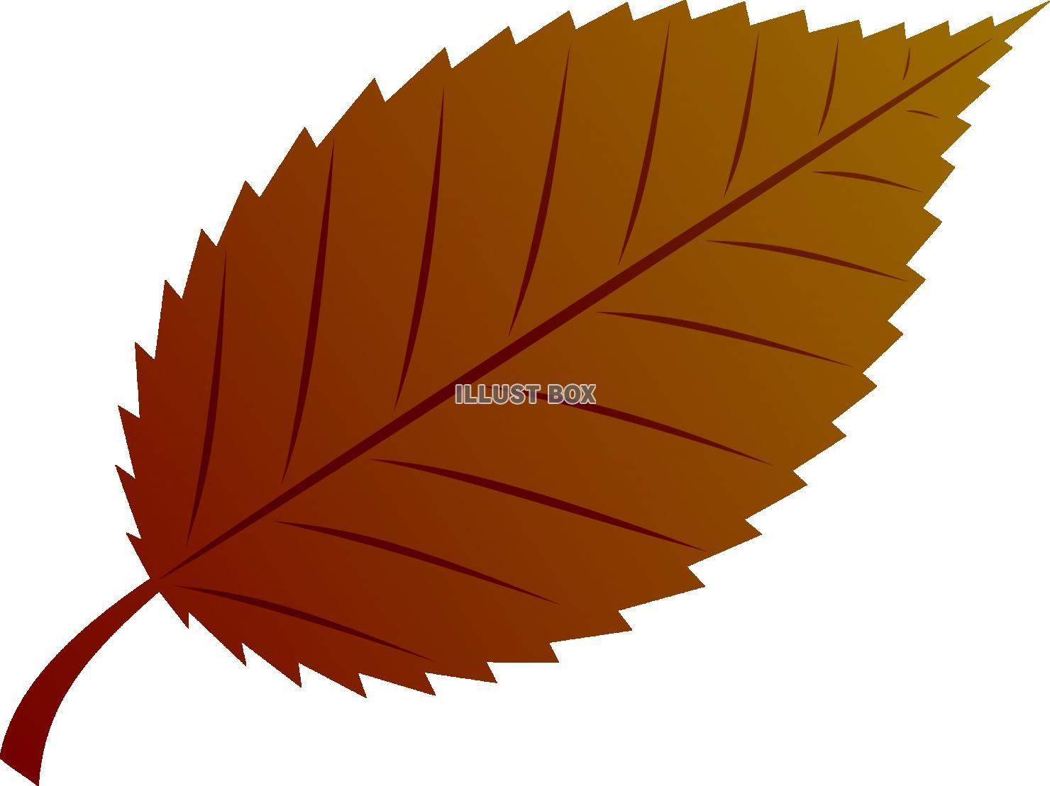 無料イラスト 植物 葉 枯葉