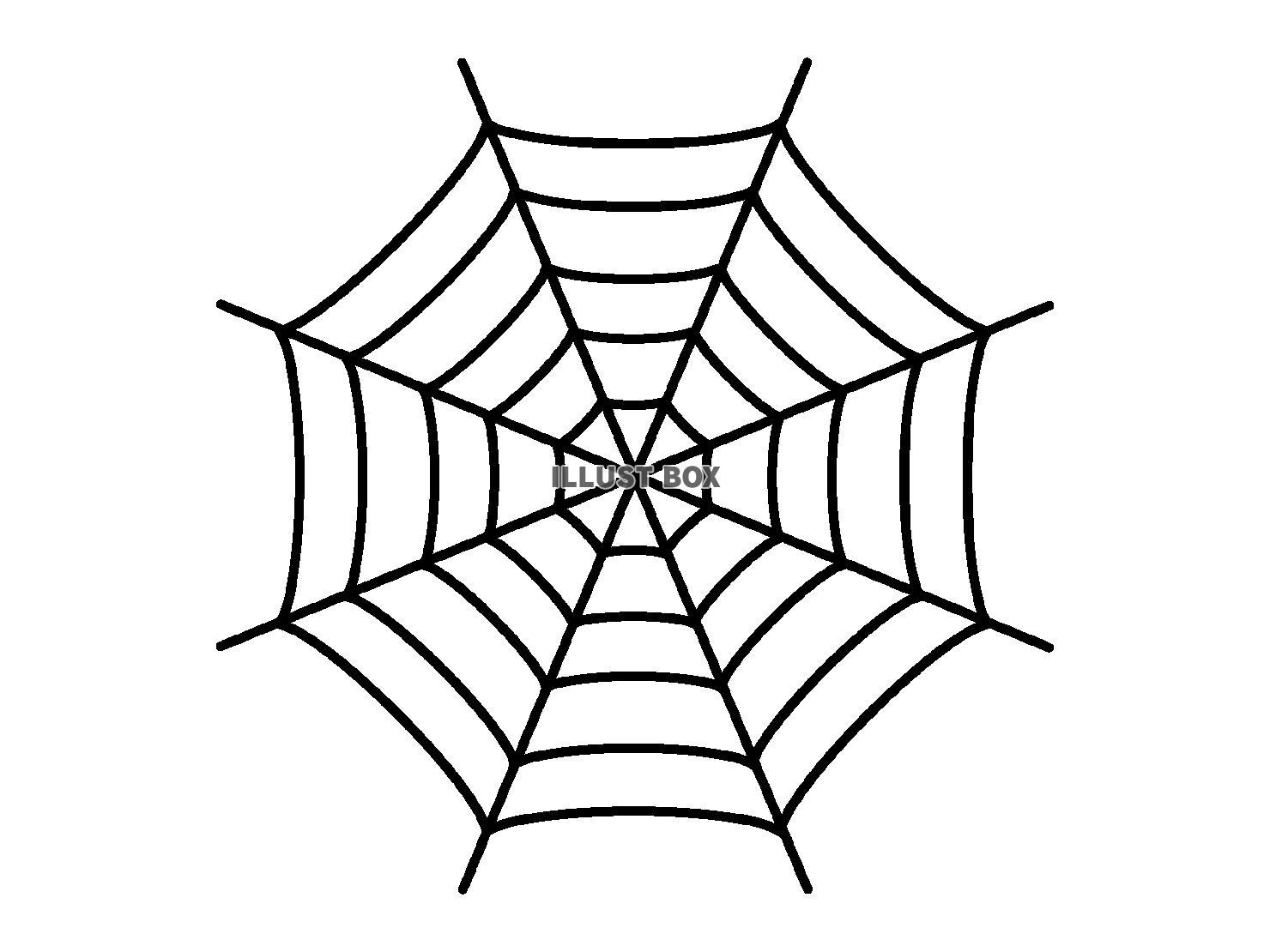 無料イラスト 蜘蛛の巣