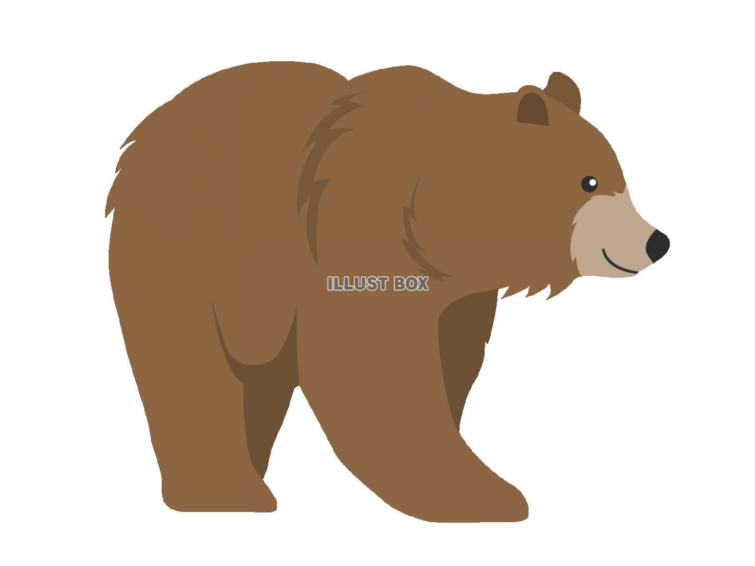 無料イラスト クマ
