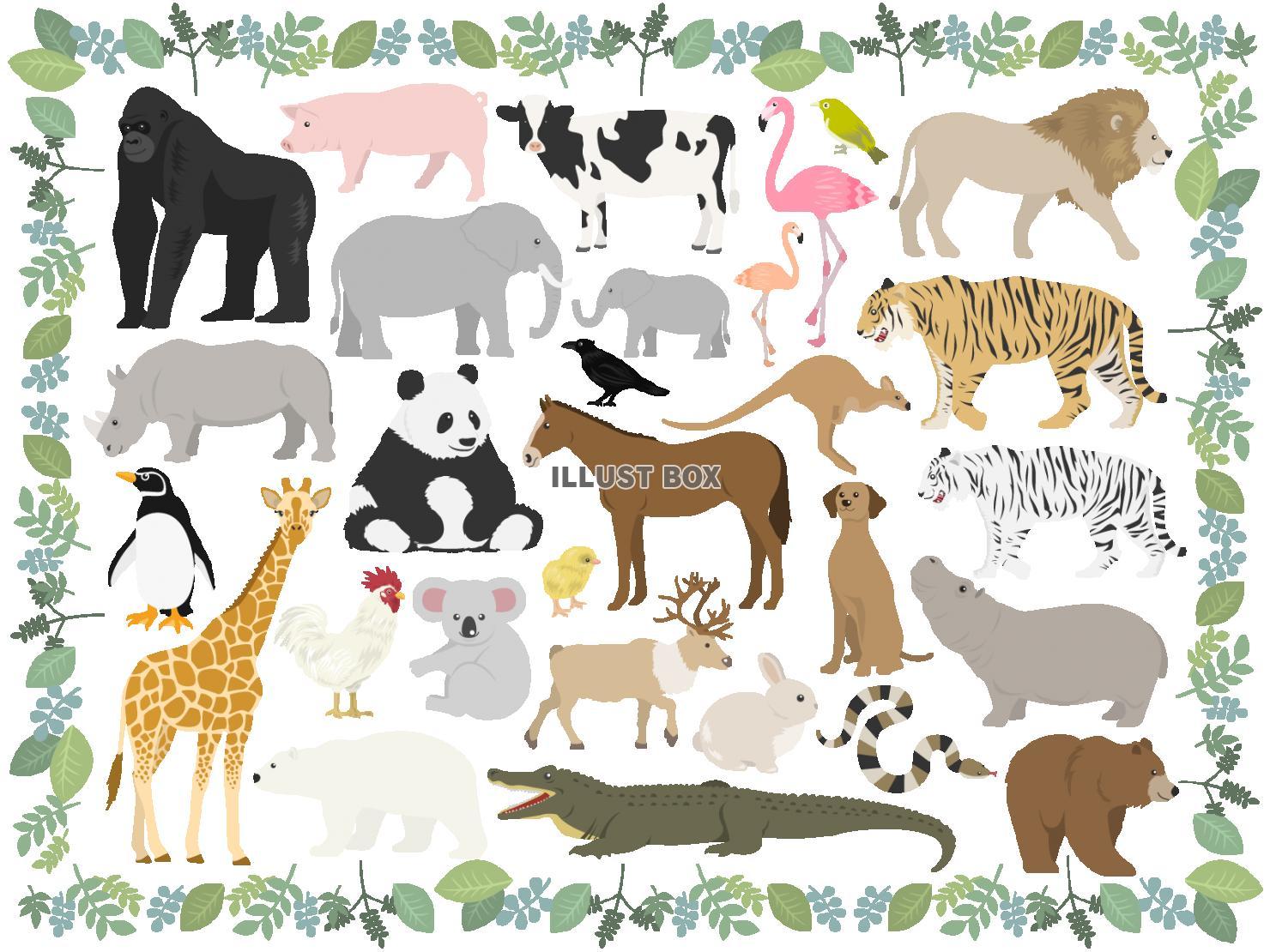 無料イラスト 動物のイラストセット