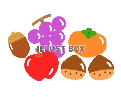 無料イラスト 秋の果物ライン 透過png