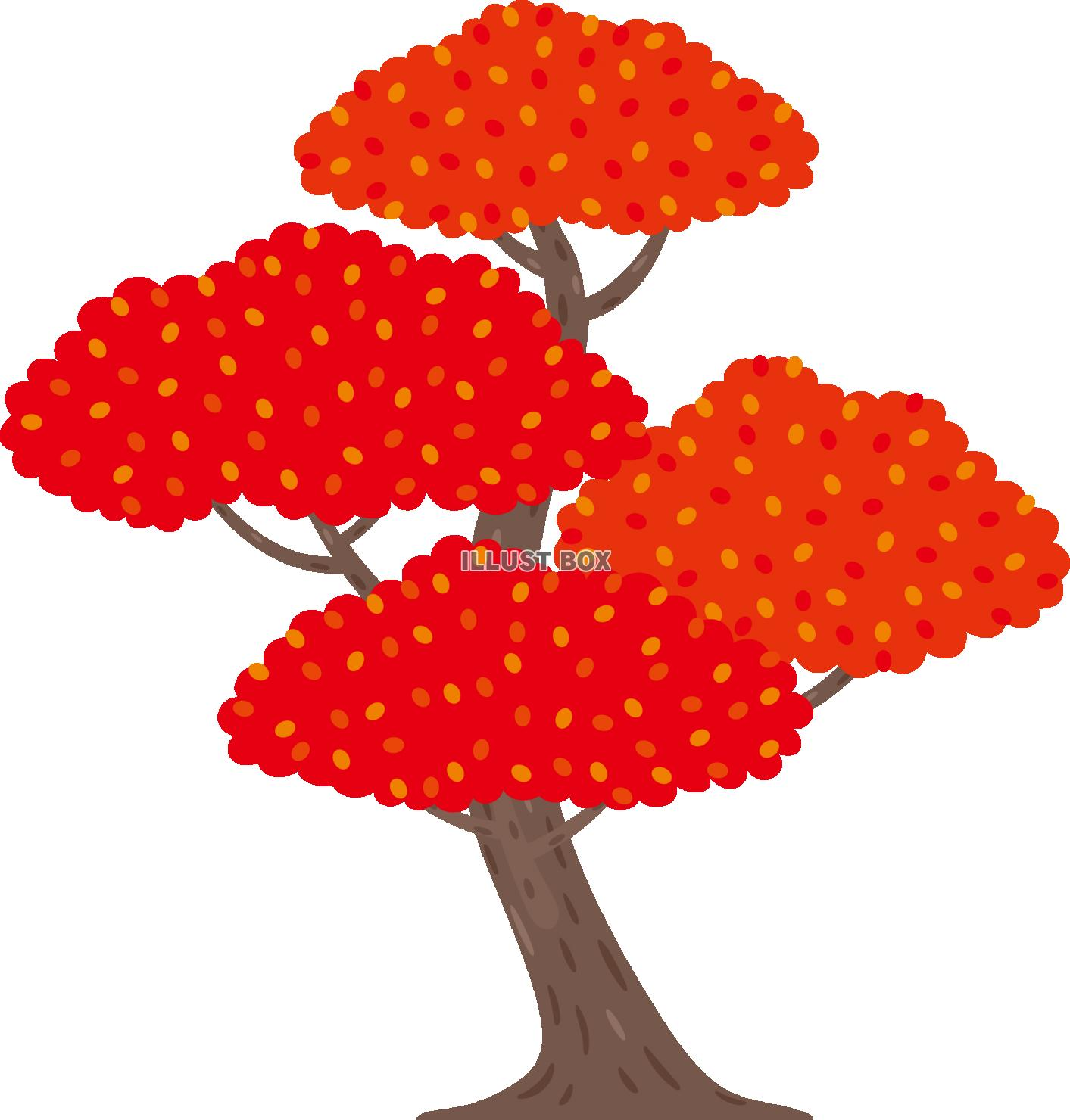 無料イラスト 秋 紅葉した木