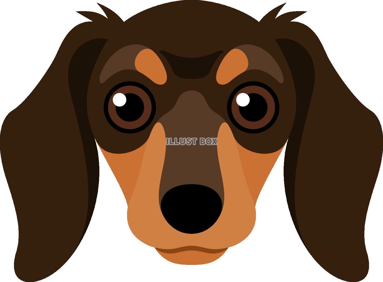 無料イラスト 犬 犬種 ダックスフンド