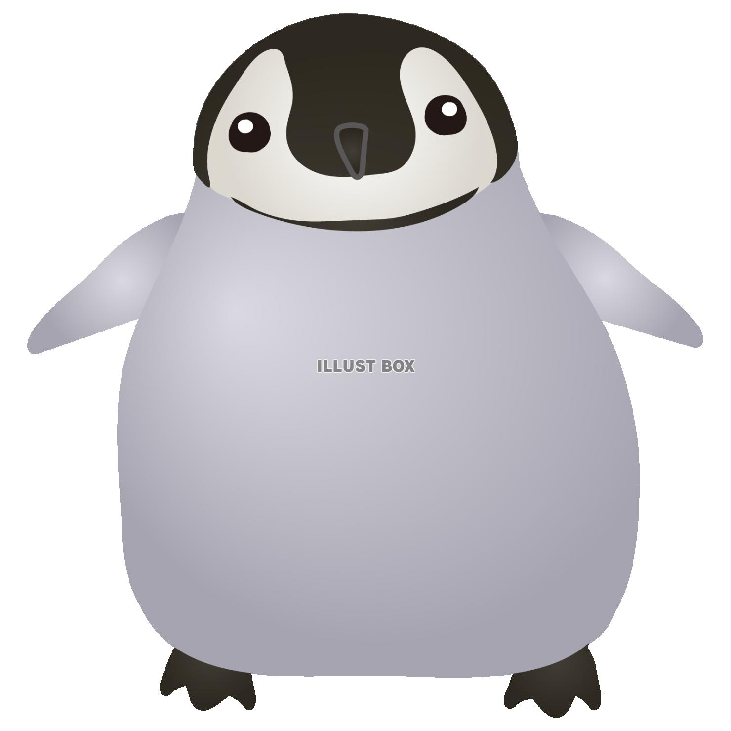 無料イラスト ペンギンの赤ちゃん