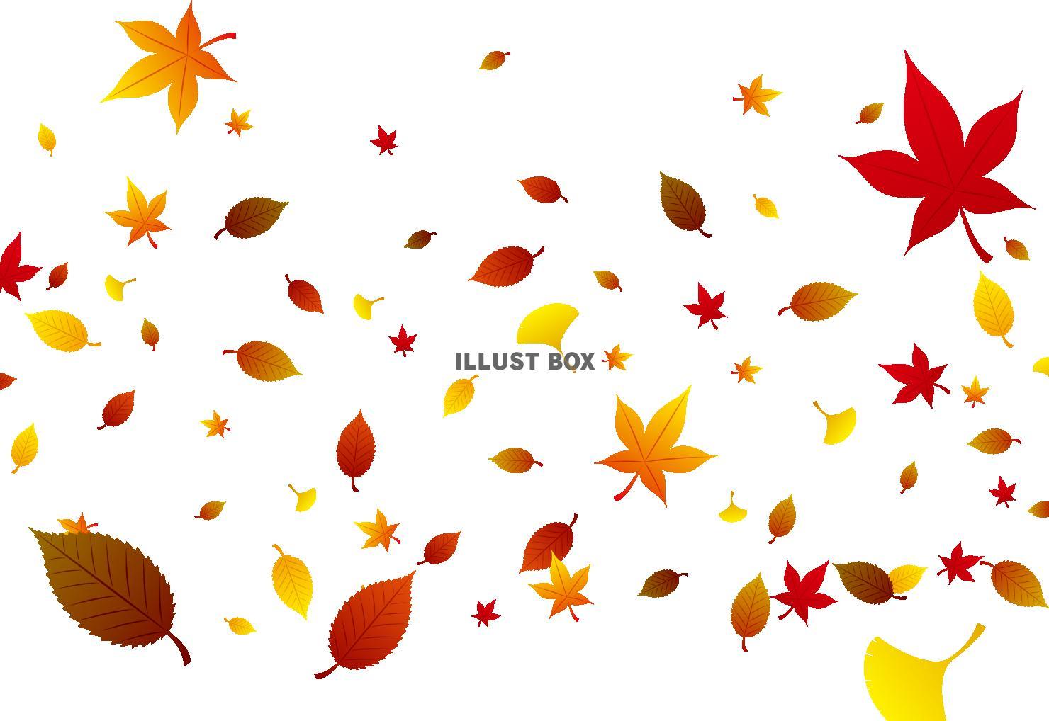 無料イラスト 秋のイメージ 落ち葉 壁紙
