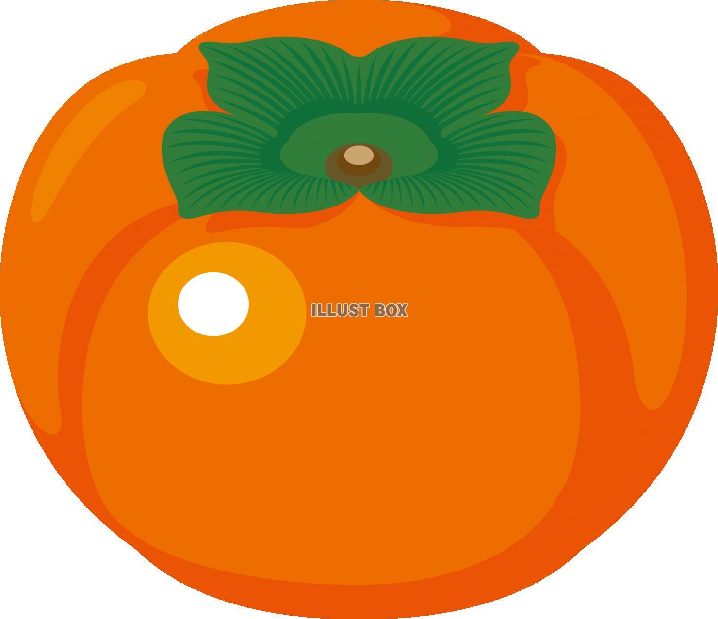 無料イラスト 秋の味覚 フルーツ 柿
