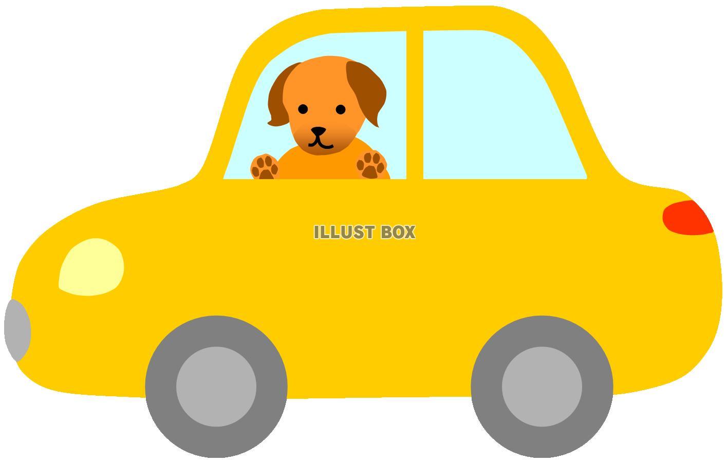 無料イラスト 車に乗っている犬1