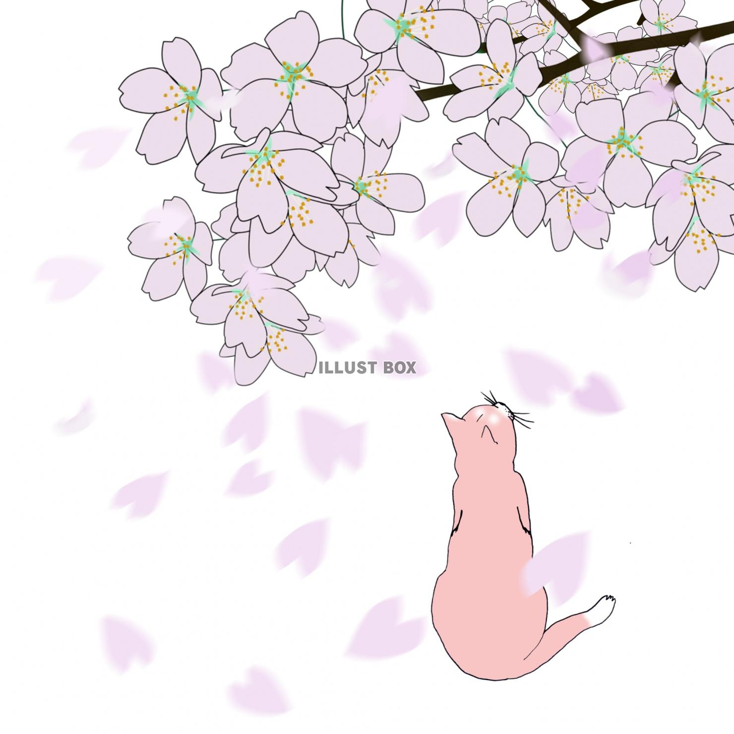 最も検索された 春 らしい イラスト ベスト 壁紙イラスト