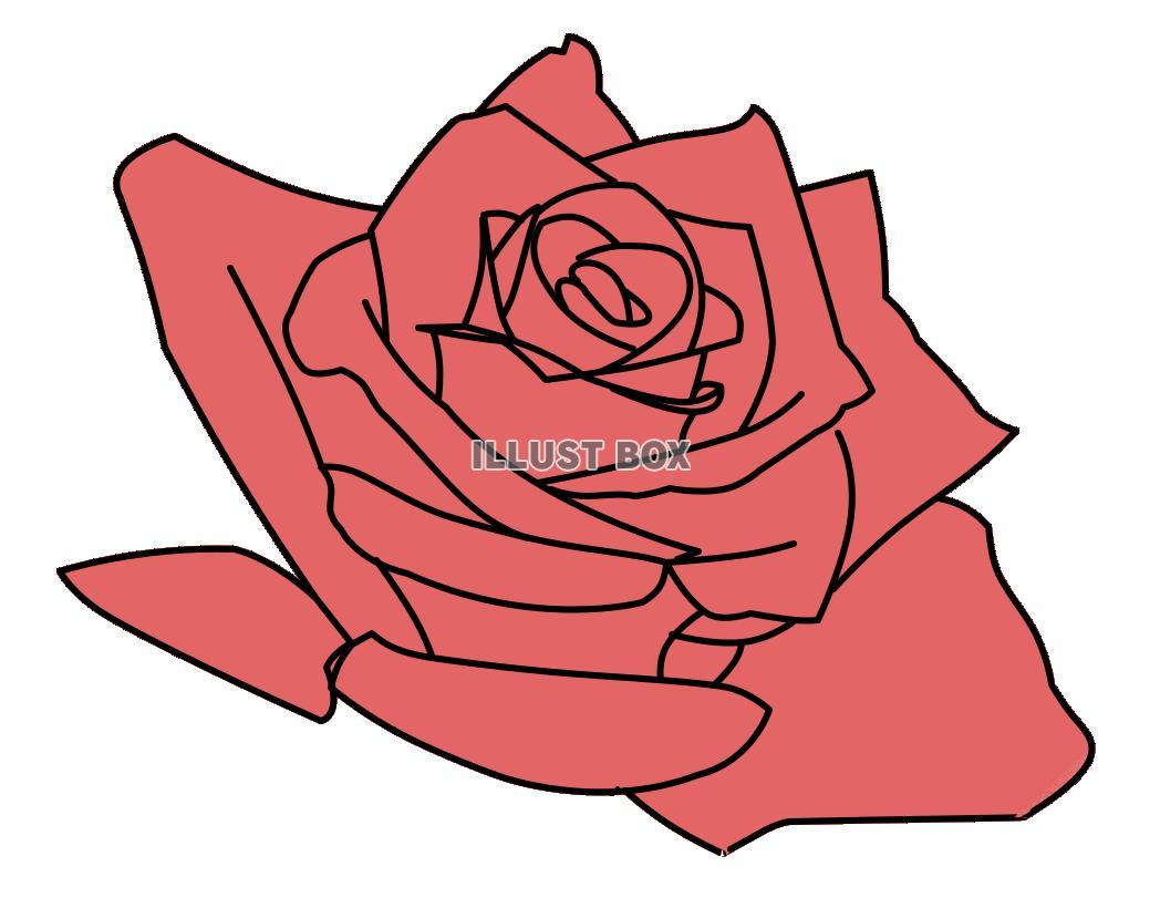 かっこいい 薔薇のイラストが無料 イラストボックス