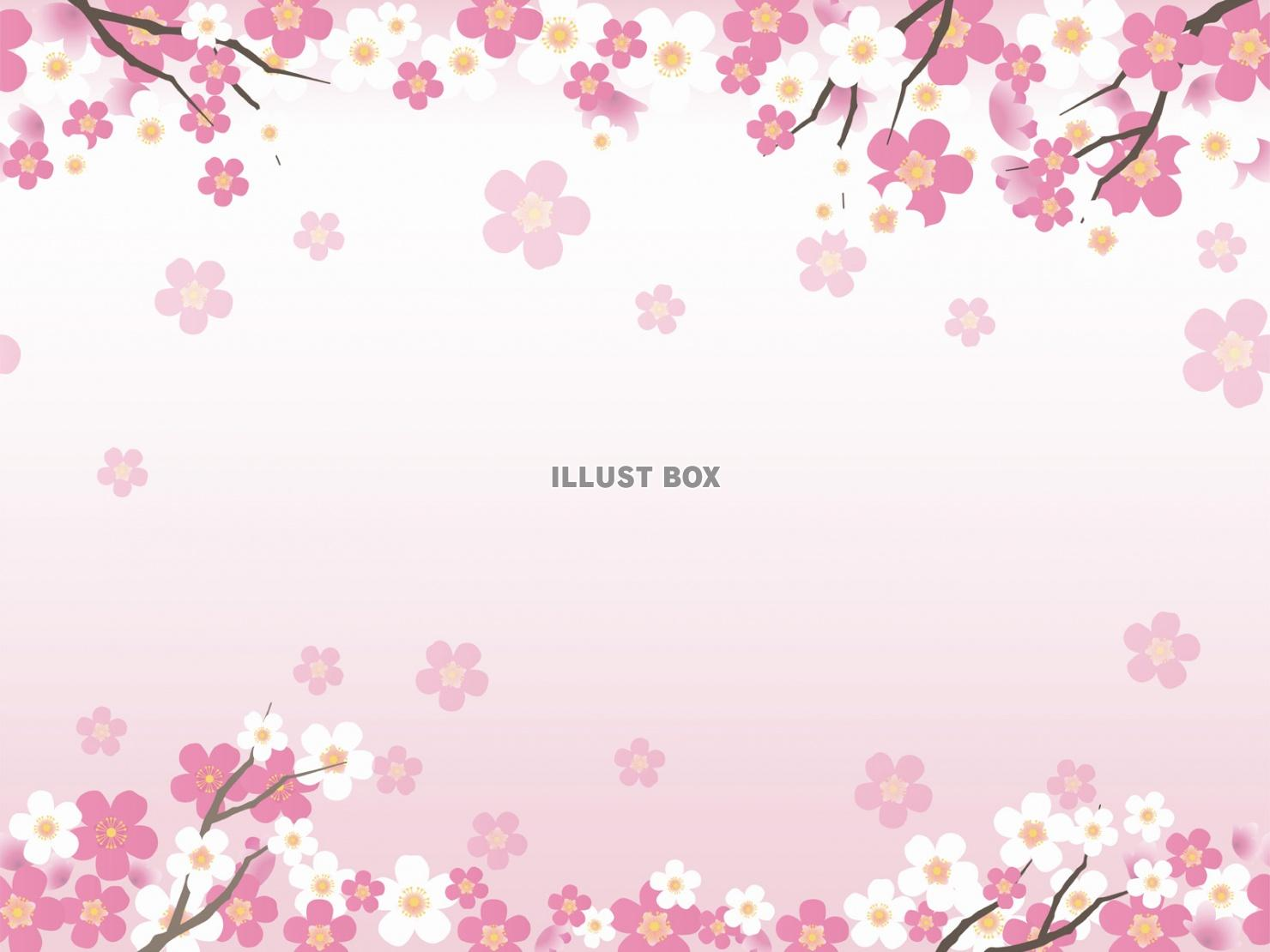 無料イラスト シームレスな桜の背景