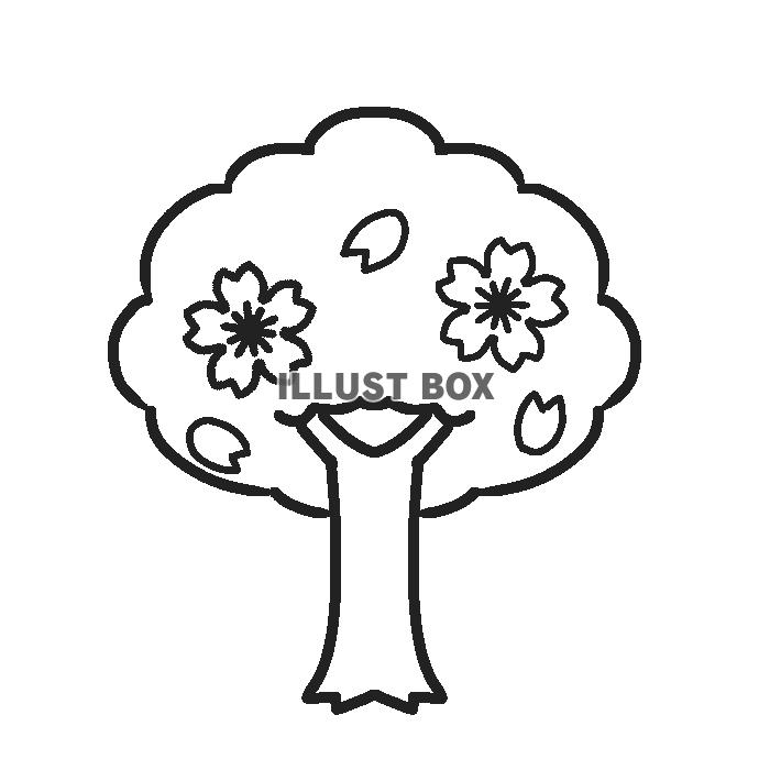 無料イラスト モノクロ桜の木イラスト 透過png