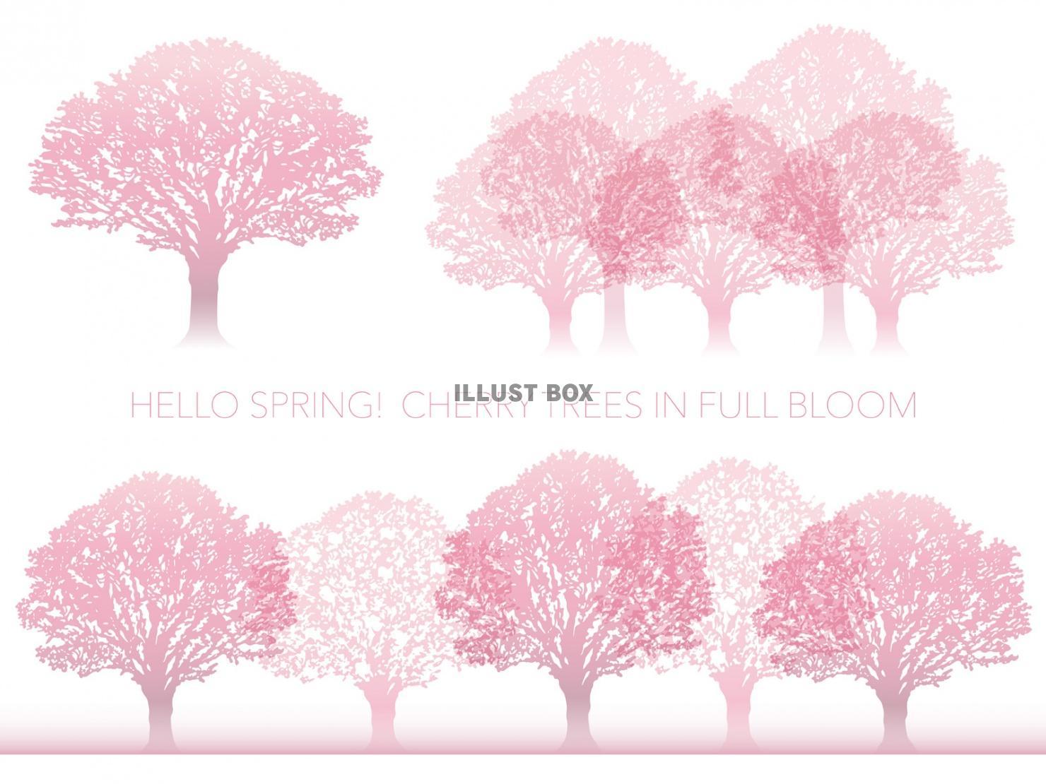 無料イラスト 満開の桜の木 セット