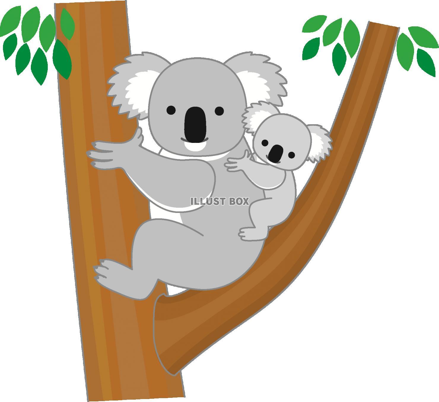 無料イラスト コアラ縁取り線あり木登り1