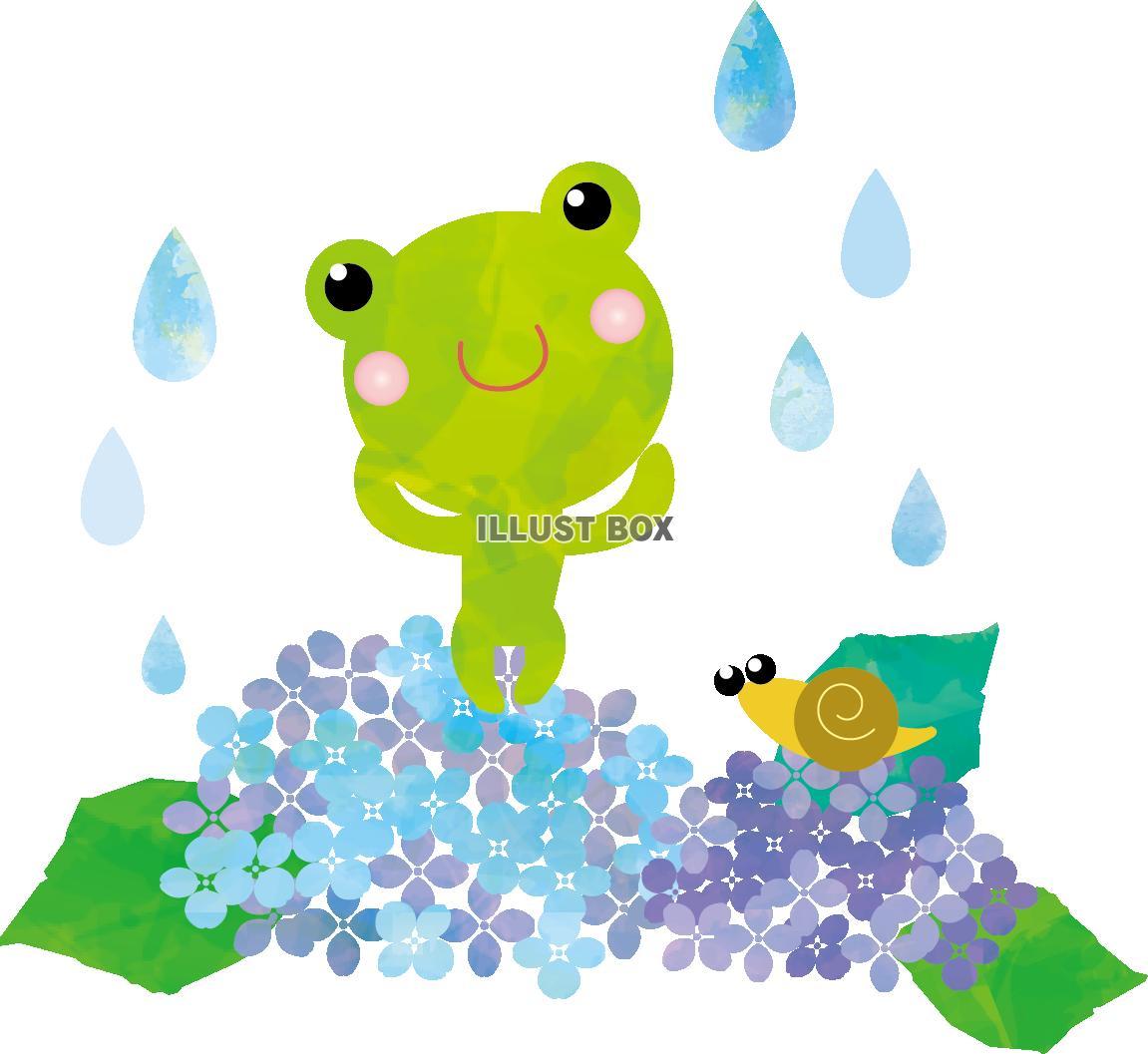 無料イラスト かえる 梅雨 あじさい イラスト 花 雨 水彩 シンプル か