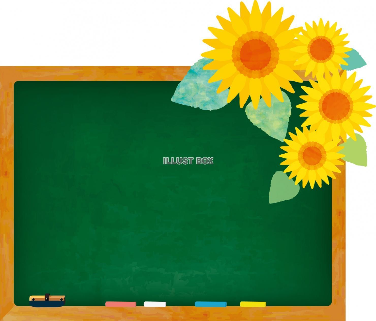 無料イラスト 黒板 ひまわり 夏休み フレーム 背景 飾り枠 壁紙 水彩